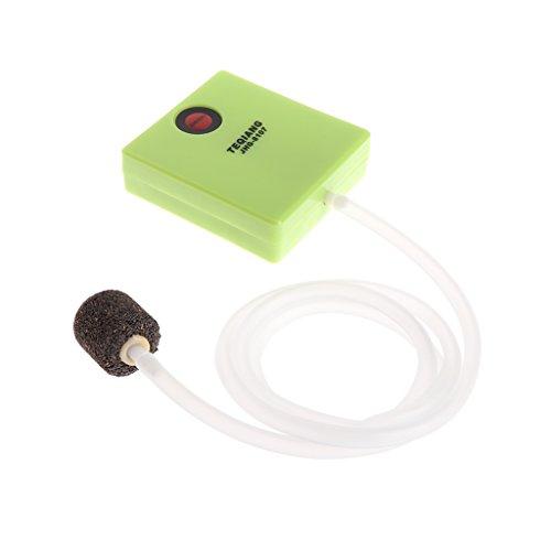 siwetg Trockenes Aquarium mit Batterien, Luftpumpe, Sauerstoff mit Luftstein