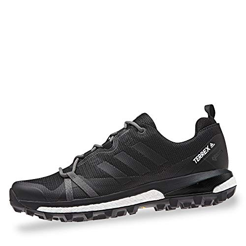 adidas Womens TERREX Skychaser LT GTX Walking Shoe, Carbon/Core Black/Active Pink, 40 EU