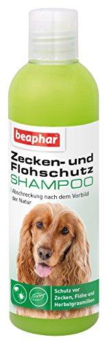 beaphar Zecken- & Flohschutz Shampoo   Zeckenschutz für Hunde und Katzen ab 12 Wochen   Flohmittel als Shampoo   Anti-Zecken-Shampoo   250 ml Flasche