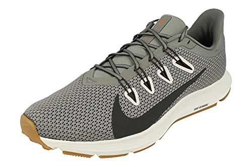 Nike Herren Leichtathletikschuhe, Rauchgrau 009, 42 EU