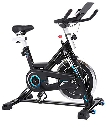 ANCHEER Heimtrainer - Stationäre Fahrräder, Fitnessfahrrad mit iPad-Halter, LCD-Monitor und bequemem Sitzkissen, flüsternde, leise Indoor-Radfahrräder für das Heim-Fitnessstudio