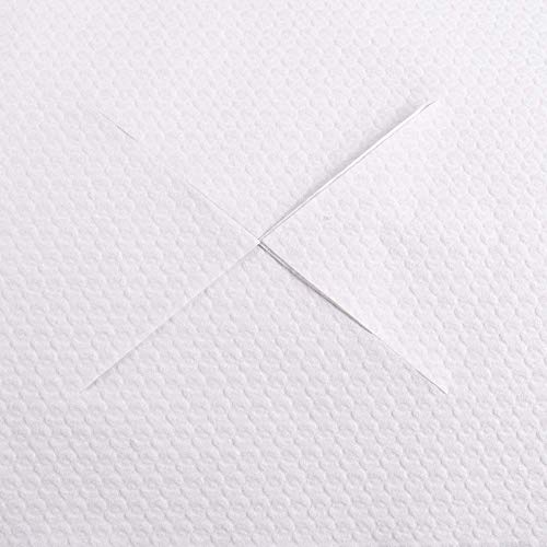 bfp Versand Physiozubehör 1000 (100 Stück GRATIS) Nasenschlitztücher, Hygieneauflage, 30 x 21 cm, weiß