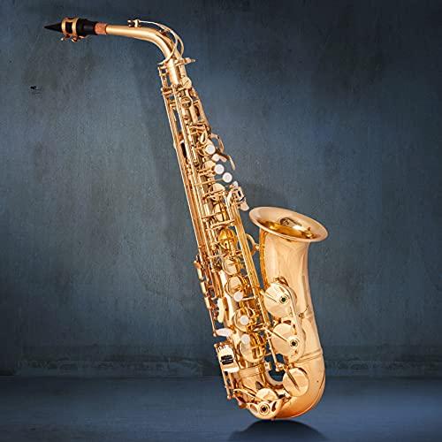 BOTOWI Altsaxophon, Professionelles Alt Eb Es Saxophon Goldlack-Finish, Saxophon Blasinstrument mit Muschelklappen, Premium Vergoldetem Messing Sax Komplettset für Anfänger, Studenten, Profi