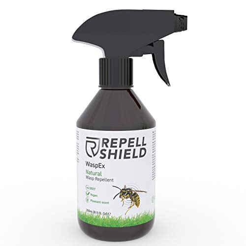 RepellShield - 100% Veganes Wespenspray als Wespenabwehr auch für Hornissen, Die Alternative zum Wespenschaum als Wespenspray Sofortwirkung, Antiwespen Mittel ideal als Wespenschreck Balkon - 250ml