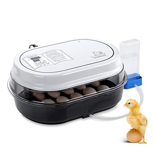 Pedy Vollautomatische Inkubator für bis zu 18 Hühnereier Brutmaschine Motorbrüter Hühner Brutapparat mit LED Temperaturanzeige und Präzieser Temperatursensor, Temperatur und Feuchtigkeitsregulierung