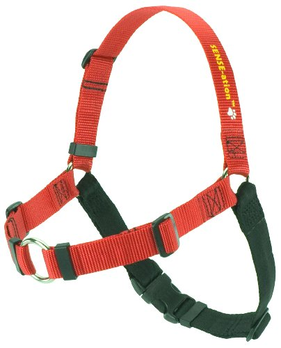 Erziehungsgeschirr für temperamentvolle Hunde – Das SENSEation Harness Erziehungshalsband für Hunde, die stark an der Leine ziehen – Anti Zieh Garantie! (Rot, L 2.5cm)