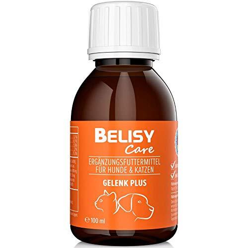 BELISY > Gelenk Plus < Gelenk Tropfen für Hunde & Katzen - 100 ml - Flüssige Nahrungsergänzung mit Teufelskralle, Glucosamin, MSM & Grünlippmuschel - Hergestellt & Laborgeprüft in Deutschland