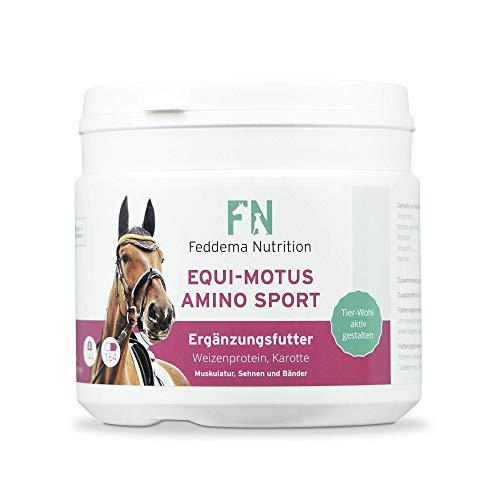 Feddema Equi-Motus Amino Sport – Pferde-Ergänzungsfutter für Muskeln und Energiehaushalt mit hochdosierten Proteinen