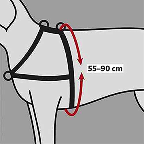 TRIXIE Lead'n'Walk Hundehalsband, Größe M-L, schwarz