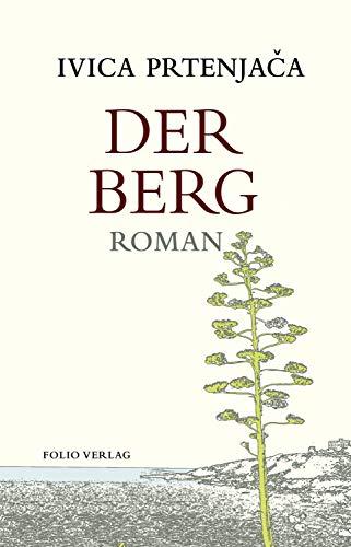 Der Berg (Transfer Bibliothek 157)
