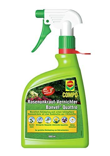 Compo Rasenunkraut-Vernichter Banvel Quattro AF (Nachfolger Banvel M), Bekämpfung von schwerbekämpfbaren Unkräutern im Rasen, Anwendungsfertig, 1 L