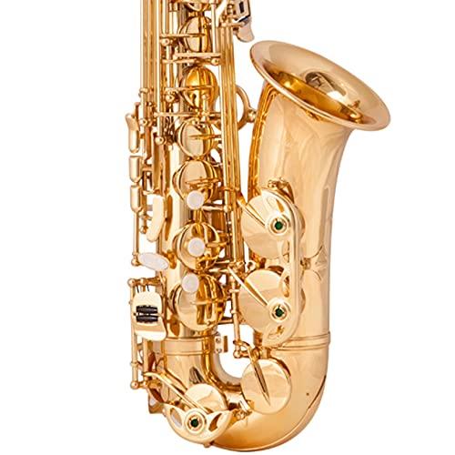 BOTOWI Saxophon Sax, Es Altsaxophon Messing Holzblasinstrument, Professionelles Saxophon Gold Lack Finish, Saxophon mit Koffer, Mundstück, Umhängeband Komplettset für Anfänger Studenten Profi