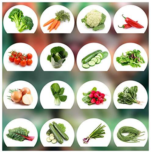 Prademir Gemüse Samen Set - 16 Gemüse Sorten aus Portugal   100% Natur Saat (Keine Chemie, Gentechnik, künstliche Wachstums-Helfer)