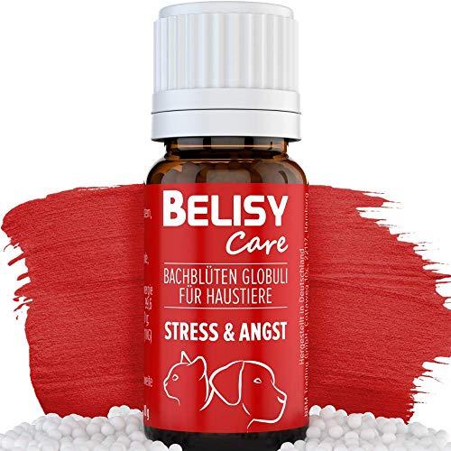 BELISY Angst & Stress Bachblüten Globuli für Hunde & Katzen - Beruhigungsmittel bei Angst & Stress - Orig. Mischung nach Dr. Bach - Notfall Globuli zur Beruhigung von Haustieren - ohne Alkohol - 10g