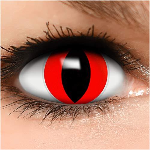 Farbige Kontaktlinsen Rote Katze in rot + Behälter - Top Linsenfinder Markenqualität, 1Paar (2 Stück)