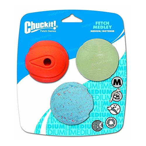 Chuckit! Medley Hundebälle, leuchten im Dunkeln, Hüpfen und Pfeife, zum Apportieren, mittelgroß, 3 Stück