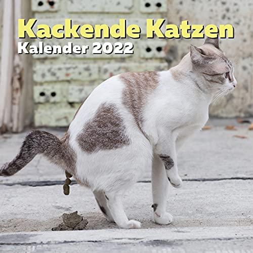 Kackende Katzen Kalender 2022: Lustiges Geschenk für Katzenliebhaber Männer, Frauen, Kinder, Jugendliche, Freunde, Mitarbeiter   Lustige Geschenkideen für Knebel, Witz, Geburtstag oder Weihnachten