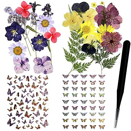 124 Stück natürliche echte getrocknete gepresste Blumen Blätter Set und Schmetterling Aufkleber Aufkleber mit Pinzette für Scrapbook Harz Schmuck Handwerk DIY Kerze und Nail Art Blumendekorationen