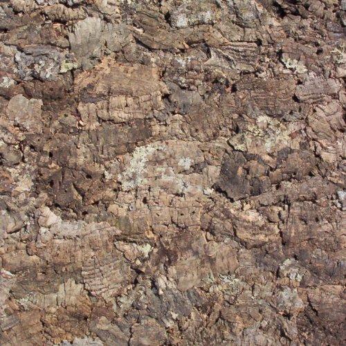 Terra Exotica Zierkork-Rückwand 90 x 60 cm Natur, Kork Rückwand, Korkrückwand, Zierkorkrückwand